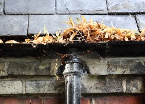 Gutter Cleaning in Wirral